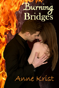 Burning Bridges by Dee S. Knight  www.sorchiadubois.com